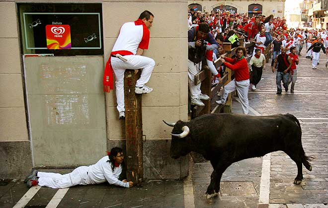Bull_fighting_11